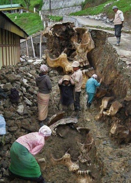 Giant skeletons found in Equador